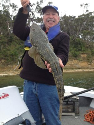Rowey from Happy Hookers with 73cm Flathead